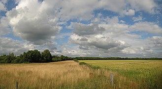 20090711 Landscape near Vries Dr NL.jpg