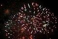 2010 07 14 bastille day fireworks 021 (4839481038).jpg