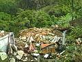 2011-04-27 Fubá.jpg