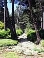 2011-06-19 Arroyo del Valle de Enmedio - panoramio.jpg