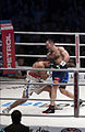 2011 boxing event in Stožice Arena-Dejan zavec IIIII.jpg