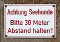 2012-08-11 Heligoland Ausflug, Düne 02.JPG