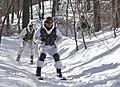 2013.2.7 한미 해병대 설한지훈련 Rep.of Korea & U.S Marine Corps Combined Exercises (8468049034).jpg