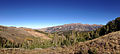 2014-10-04 16 13 51 Panorama north and east toward Subalpine Firs, Whitebark Pines, the Jarbidge River Canyon and the Jarbidge Mountains from the road to Deer Mountain southwest of Jarbidge, Nevada.JPG