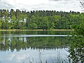 2015-05-25 Rochowsee 484.jpg