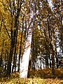 335 01 Prádlo, Czech Republic - panoramio (1).jpg