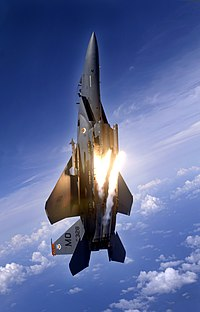 391st Expeditionary Fighter Squadron - F-15E