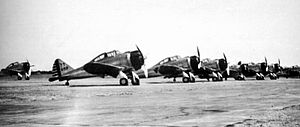 3d Fighter Training Squadron - 3d Pursuit Sqauadron P-35As at Nichols Field, Luzon, Philippines.