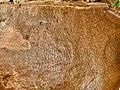 3rd-century BCE Jonnagiri Erragudi Yerragudi Asoka rock edict inscription, Andhra Pradesh India - 09.jpg