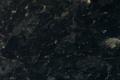 400-mork-labrador.png