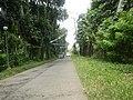 9501Poblacion Del Carmen, Alaminos, Road 18.jpg