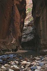 Zion slot canyons narrows