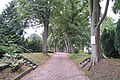 ANKLAM Baudenkmal 3 Wegführung Steinweg.jpg