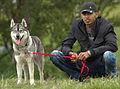 A Dog's Story (5854304810).jpg