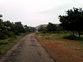 A Rural road near Anandapuram in Visakhapatnam district.jpg