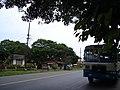 A bus awaits at a road in Goa.jpg
