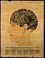 A head containing over thirty images symbolising the phrenol Wellcome V0009526.jpg