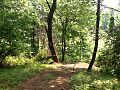 A hiking trail at Free Spirit Campground and Recreation Center in Landisburg, Pennsylvania- 2014-06-20 01-51.jpg