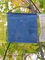 A prayer flag outside Samye Dzong London.jpg
