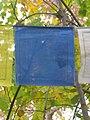 A prayer flag outside Samye Dzong London.jpg