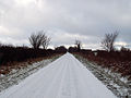 A road near Denton, Lincolnshire - Dec 2005.JPG