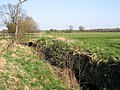 Abbotsley Brook, Abbotsley, Cambs - geograph.org.uk - 401462.jpg