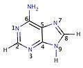 Adenine numbered.jpg