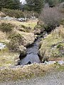 Afon Rhydyrhalen - geograph.org.uk - 1170715.jpg