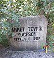 Ahmet Tevfik Yücesoy 2.jpg