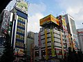 Akihabara Radio Kaikan 1st -01.jpg