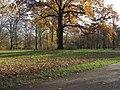 Alberteiche Großer Garten (8).jpg