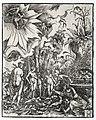 Albrecht Altdorfer - The Judgment of Paris - 1947.7 - Cleveland Museum of Art.jpg