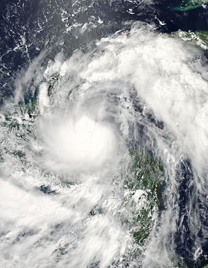 Hurricane Alex (2010) - Visible satellite image of Tropical Storm Alex near the Yucatán Peninsula