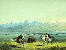 choosing sides on the frontier in the american revolution dunn walter s