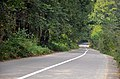 Ali Abad Katoul - Shirin Abad road - panoramio.jpg