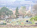 Allotments by Tower Hill - geograph.org.uk - 1193605.jpg