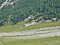 Alp Chaschauna - panoramio.jpg