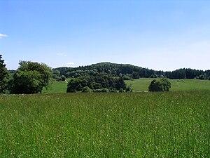 Der Altenberg von Westen