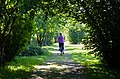 An den Schrebergärten vorbei... - panoramio.jpg