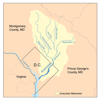 Paint Branch one of two headwaters of the Northeast Branch Anacostia River in Montgomery and Prince George's counties, Maryland, U.S.