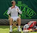 Andy Murray (8585162327).jpg