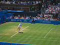 Andy Murray Serve Queens (1).jpg