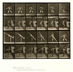Animal locomotion. Plate 315 (Boston Public Library).jpg