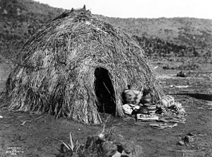 Native American contributions - Apache wickiup, by Edward S. Curtis, 1903