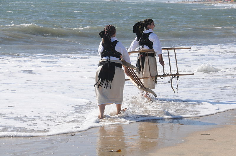 Fileapulia Beachwikimedia Commons