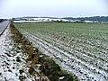Arable Field at Skelder Hill Farm - geograph.org.uk - 120517.jpg