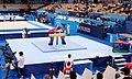 Artur Davtyan on the still rings in Olympic gymnastics.jpg