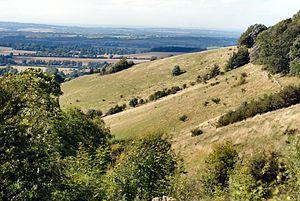 Aston Rowant National Nature Reserve - Chalk grassland hill slopes on the Chilterns escarpment, Aston Rowant NNR