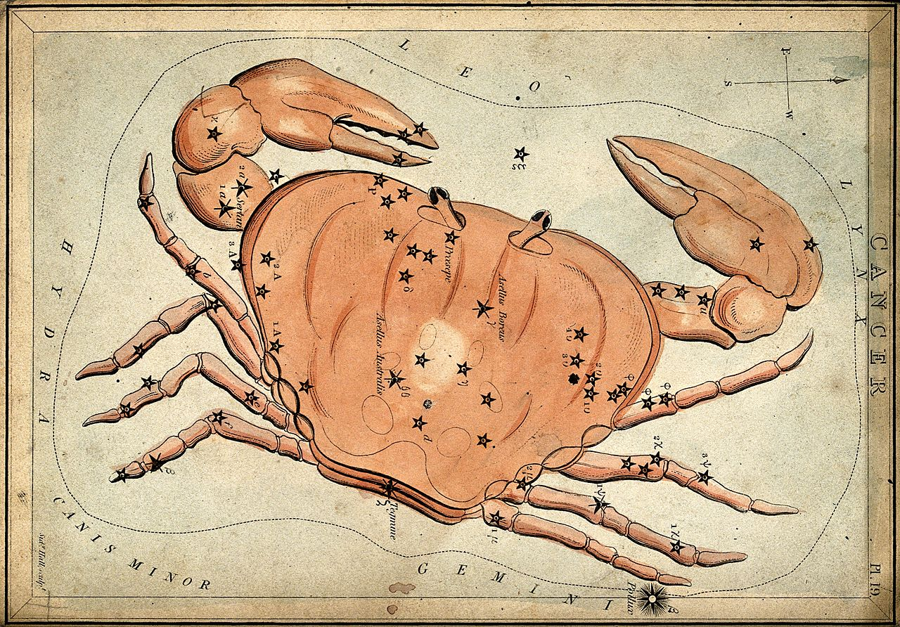 Zodiac Chart: Astrology; signs of the zodiac Cancer. Coloured engraving b ,Chart