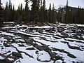 Athabasca Falls - panoramio.jpg